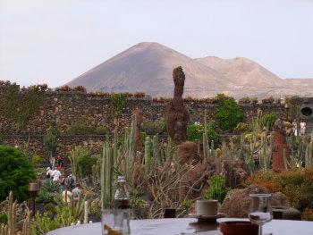kaktus53