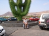 kaktus55